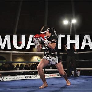 new Muay Thai